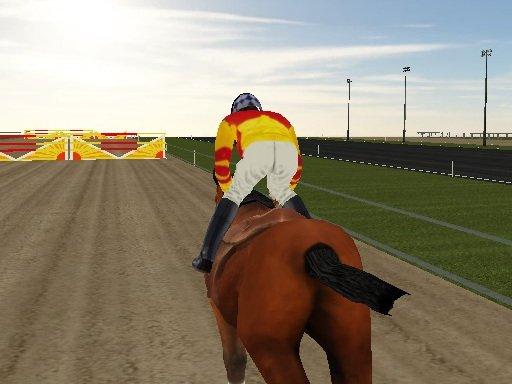 Paardenrace